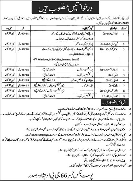 All paper jobs peshawar